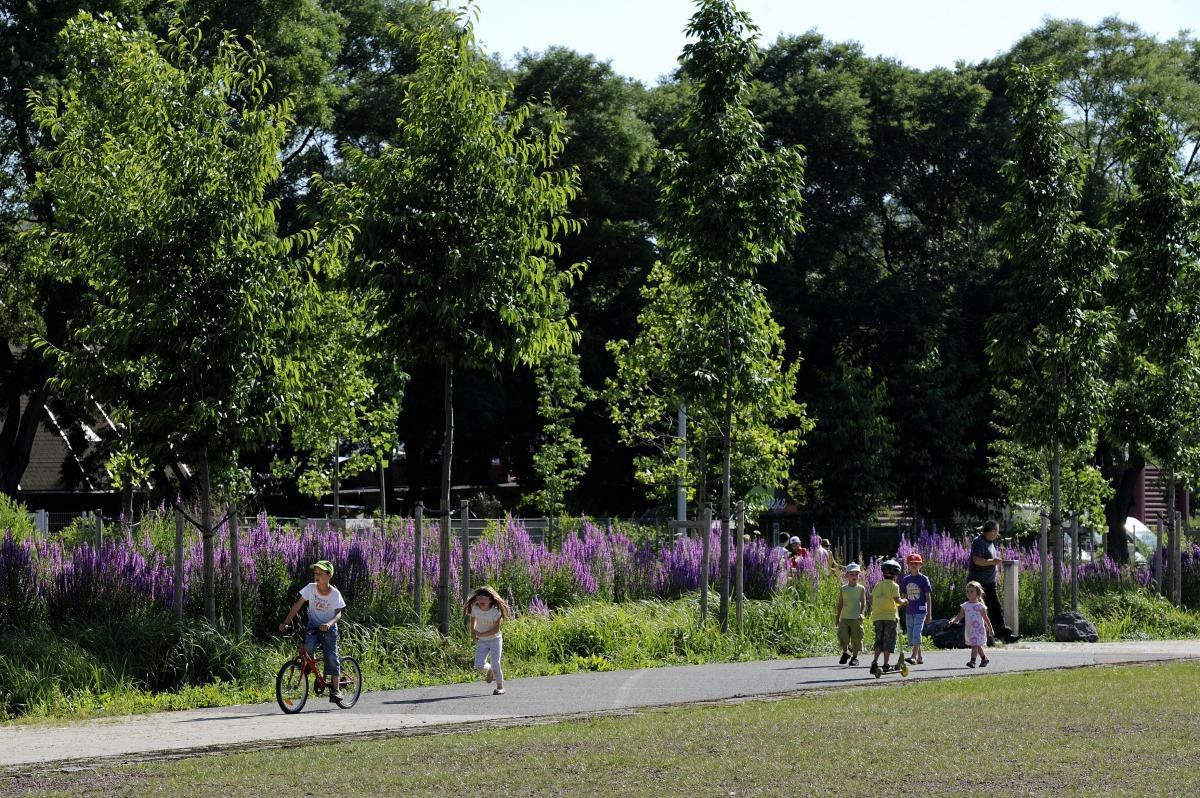 D couvrez les parcs jardins et aires de jeux de saint for Jardin et parc 78